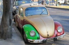 Mexico City taxis used to be all bugs
