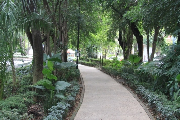 The island walkway on Avenida Amsterdam in Condesa