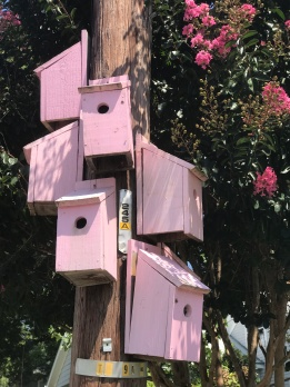 Hillsborough birdhouses